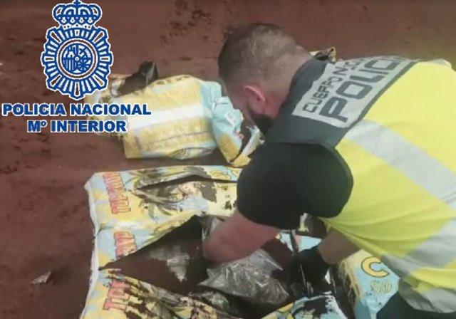 La Policía Nacional se incauta de 320 kilos de cogollos de marihuana ocultos en sacos de sustrato para plantas