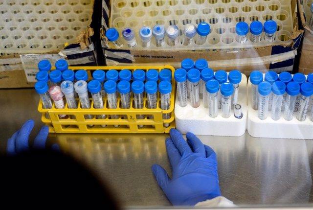 Coronavirus.- Chile supera los 30.000 casos de coronavirus tras sumar cerca de 1