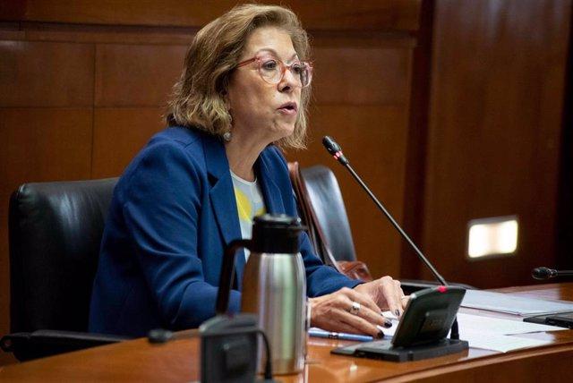 La consejera de Sanidad, Pilar Ventura, durante su comparecencia