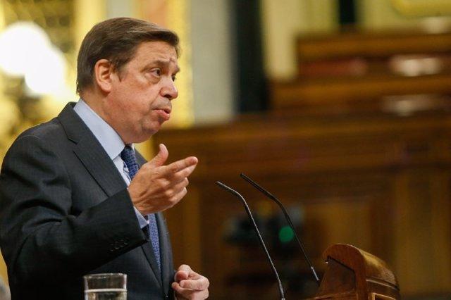 El ministro de Agricultura, Pesca y Alimentación, Luis Planas, en el Pleno del Congreso