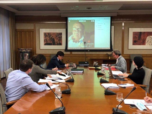 El ministro de Sanidad, Salvador Illa, se reúne por videoconferencia con el consejero de Andalucía