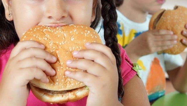 Hamburguesa, niños, colesterol.