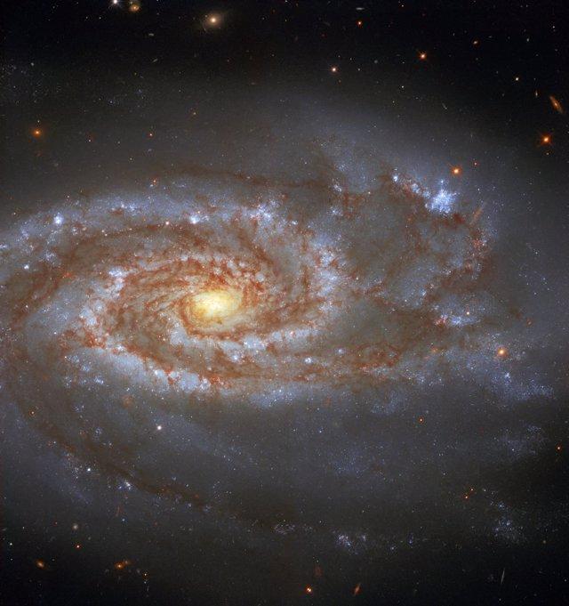 Galaxia NGC 5861