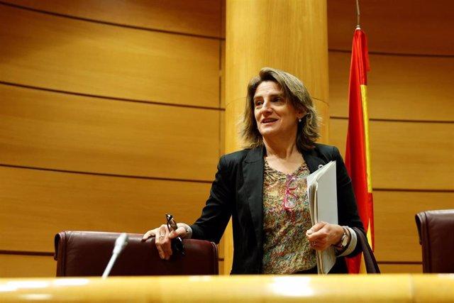 La vicepresidenta Cuarta del Gobierno y ministra para la Transición Ecológica y el Reto Demográfico, Teresa Ribera