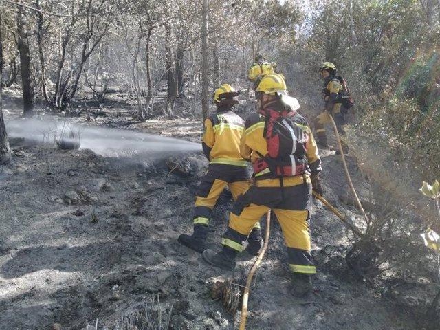 Efectivos del Ibanat trabajando en el incendio forestal de Sa Bassota, en Esporles.