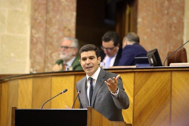 El portavoz del grupo parlamentario de Ciudadanos (Cs), Sergio Romero. Imagen de archivo
