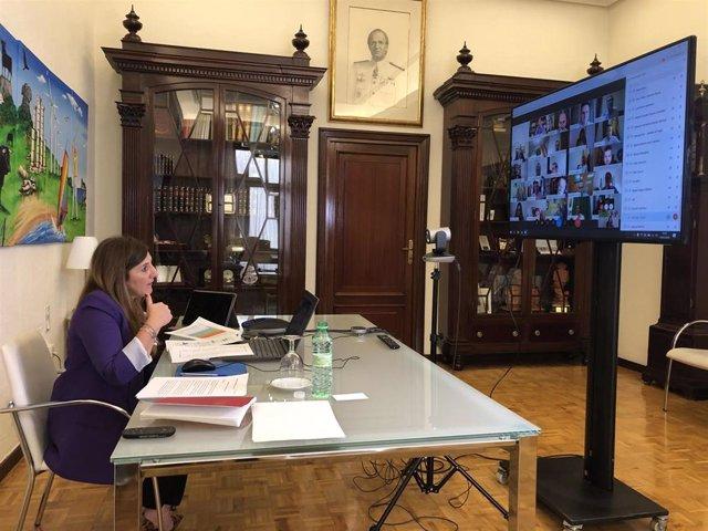 Irene García en reunión telemática con alcaldes de municipios menores de 20.000 habitantes.