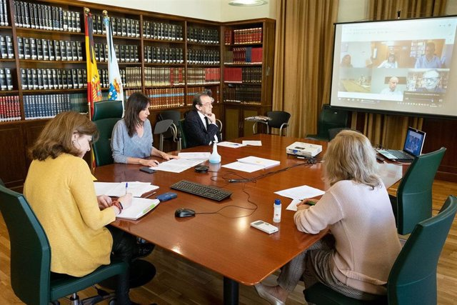Carmen Pomar participa en la reunión del grupo de trabajo del programa de transformación del SUG