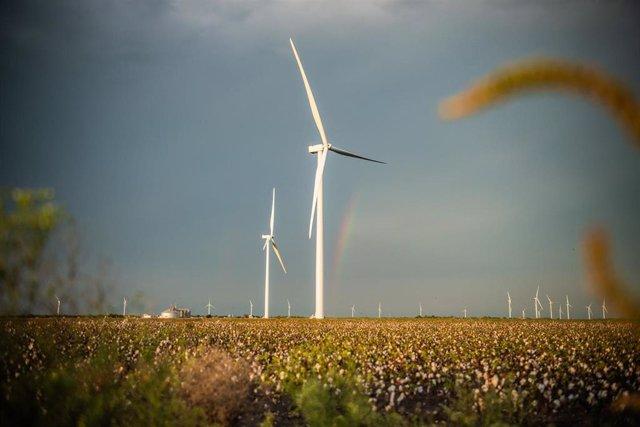 Parque eólico de Iberdrola de Karankawa en Estados Unidos
