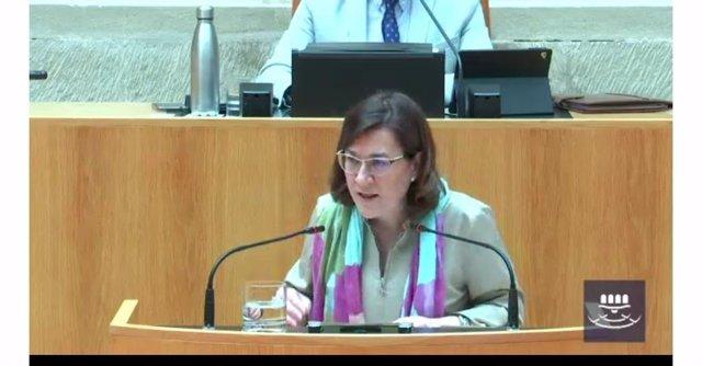 La consejera de Salud, Sara Alba, comparece en el Parlamento riojano