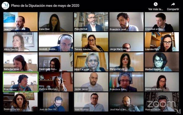 Pleno telemático de la Diputación de Málaga del mes de mayo con Juan Cassá que ha ejercicio en las primeras votaciones como portavoz de Ciudadanos