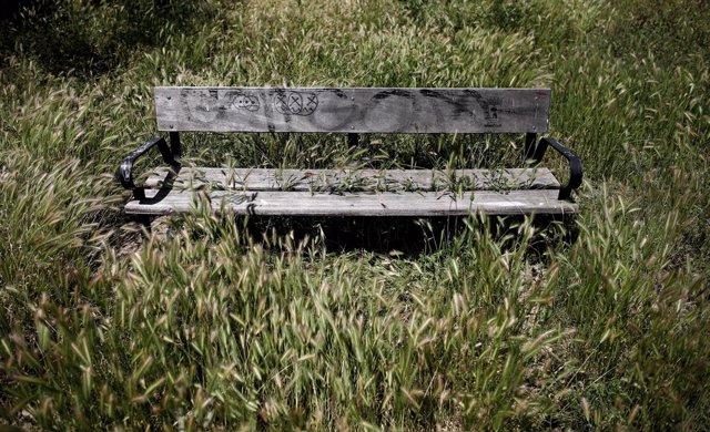 Un banc replet de gespa al parc de la Cuña Verde, al barri de La Latina de Madrid (Espanya), a 8 de maig de 2020 (arxiu)