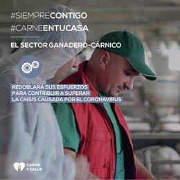 COMUNICADO: El sector ganadero-cárnico, motor económico de la España rural