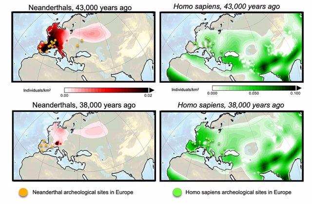 Simulaciones de cambios en la densidad de población de Homo sapiens y Neandertales