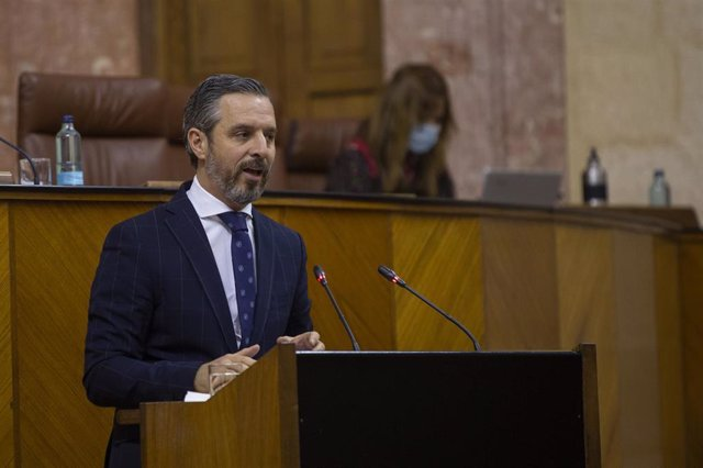 El consejero de Hacienda, Juan Bravo, durante su comparecencia en la sesión plenaria. En el Parlamento de Andalucía, (Sevilla, Andalucía, España), a 20 de mayo de 2020.