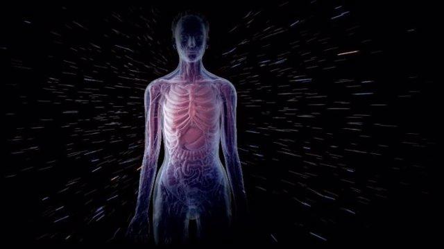 Efectos de los rayos cósmicos galácticos en el organismo de los astronautas.