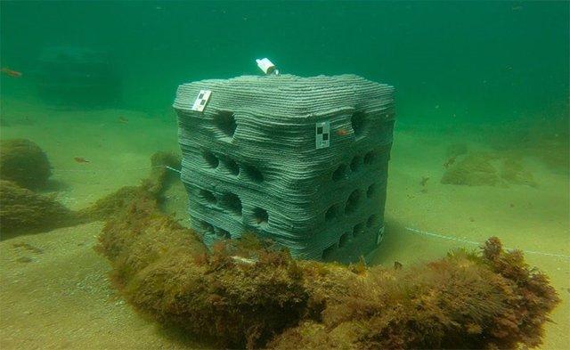 Arrecife artificial fabricado por la UC