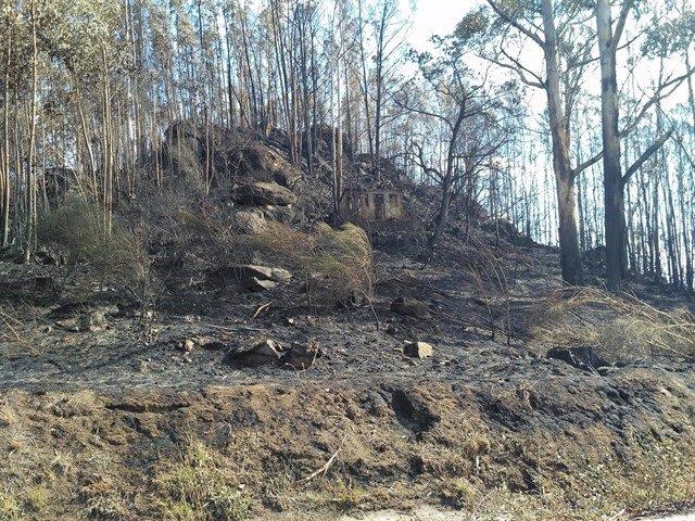 Suelo calcinado en un incendio en Galicia