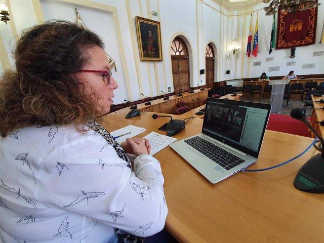 Carmen Yáñez, en una rueda de prensa telemática desde el salón de plenos del ayuntamiento.