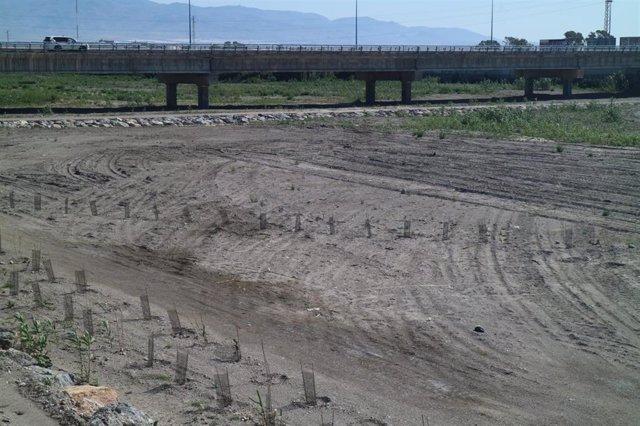 Cauce del río Andarax en Almería