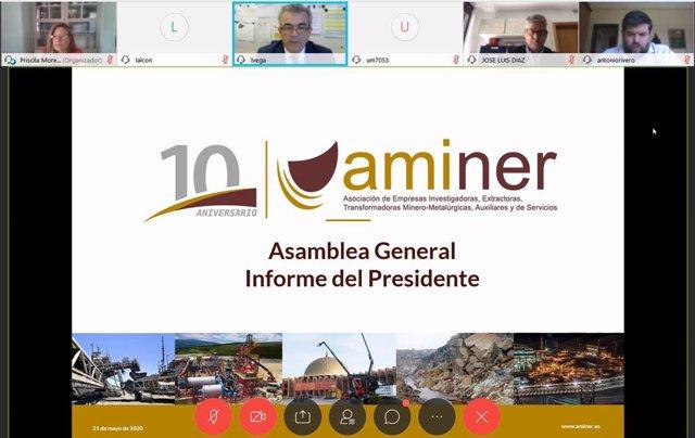 Imagen de la X Asamblea General de Aminer, celebrada este jueves de forma online.