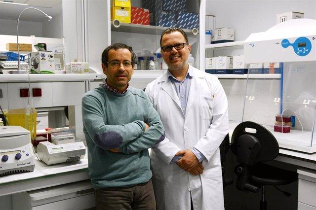 Los doctores Antonio Salas (USC) y Federico Martinón (CHUS), autores de una investigación sobre los 'supercontagiadores' de COVID-19.