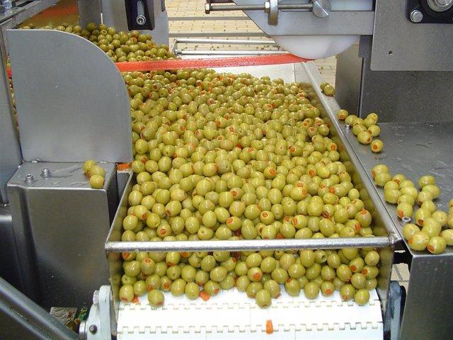 Imagen de archivo del proceso de envasado de la aceituna de mesa.