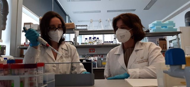 El CIPF prueban con éxito una nueva terapia para el cáncer de mama triple negativo ·
