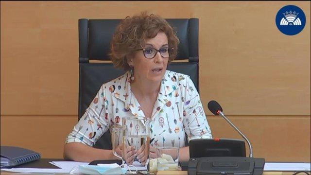 La directora general de Salud Pública, María del Carmen Pacheco, durante su comparecencia en las Cortes de Castilla y León.