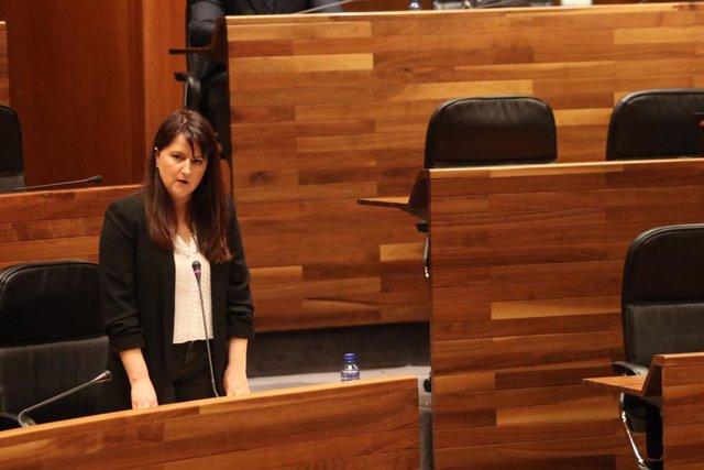 La portavoz de Ciudadanos, Laura Pérez Macho