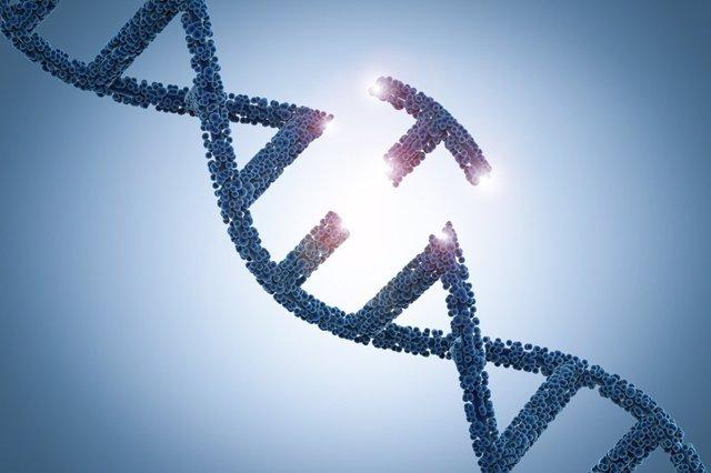 Mutación genética.