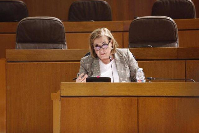 La directora gerente del 061 Aragón, Ámparo García.