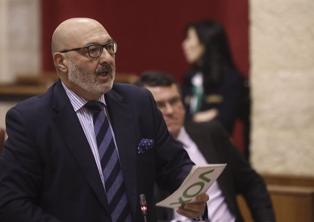 El portavoz del grupo parlamentario Vox, Alejandro Hernández