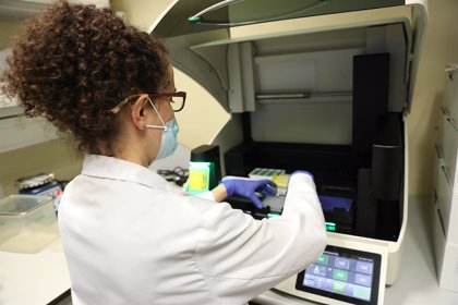 Coronavirus.- El Govern no desplegarà una segona fase del 'Programa Orfeu' de test PCR