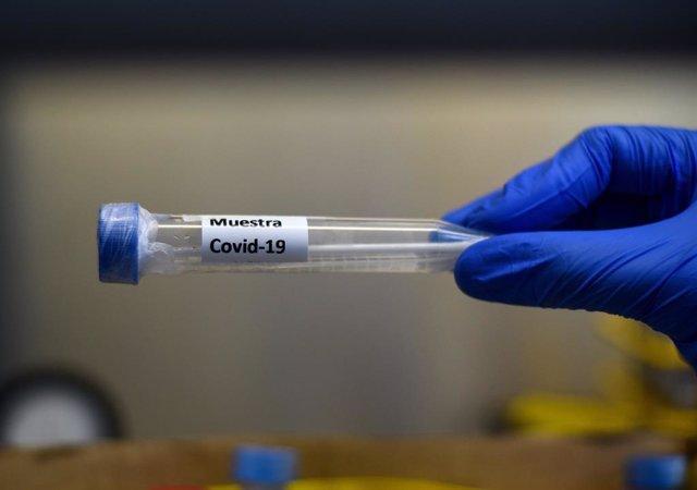 AMP.- Coronavirus.- Detenido el testigo clave en el caso de los respiradores en