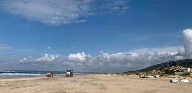 Limpieza con lejía en la playa de Zahara de los Atunes, en la provincia de Cádiz.