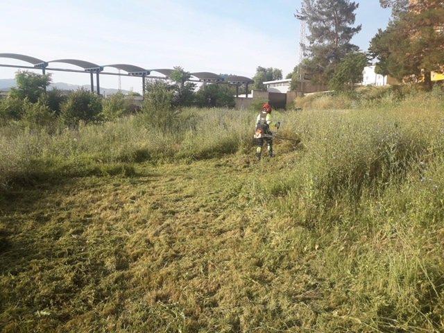 Tareas de limpieza en un solar de titularidad municipal de Jaén.