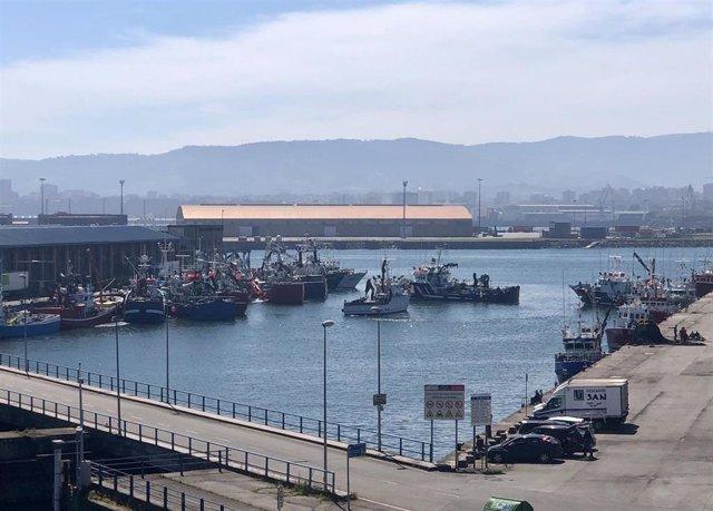 Atraque de pesqueros de bocarte en El Musel