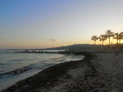 Las playas de Palma se reabrirán este lunes para los bañistas con la entrada en la fase 2 de la desescalada
