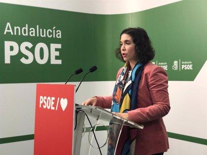 El PSOE pedirá desde los ayuntamientos de Cádiz a la Junta una nueva edición de planes de empleo