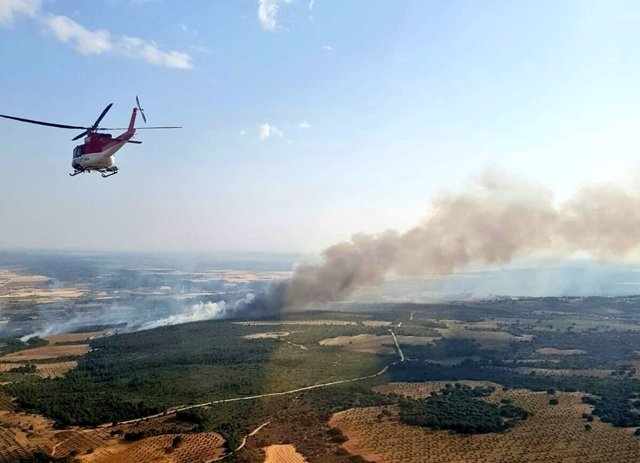 Imágenes del incendio declarado en el término municipal de El Picazo (Cuenca)