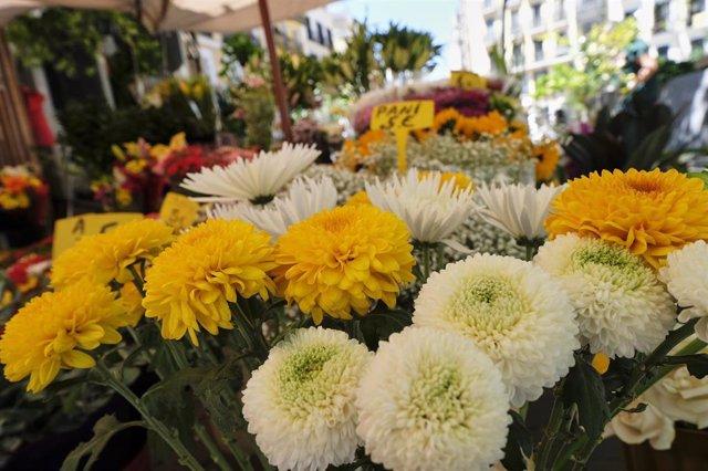 Flores a la venta en un puesto en el Mercado de Flores de Tirso de Molina