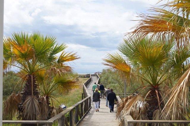 Una de las pasarelas de acceso a la playa de Punta del Moral, en Ayamonte (Huelva)