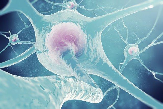 Neurons of the nervous system. 3d illustration nerve cells