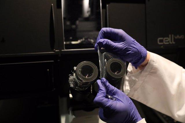 Imatge d'arxiu d'un microscopi.