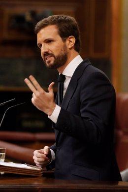 El líder del PP, Pablo Casado, intervé en el ple del Congrés.