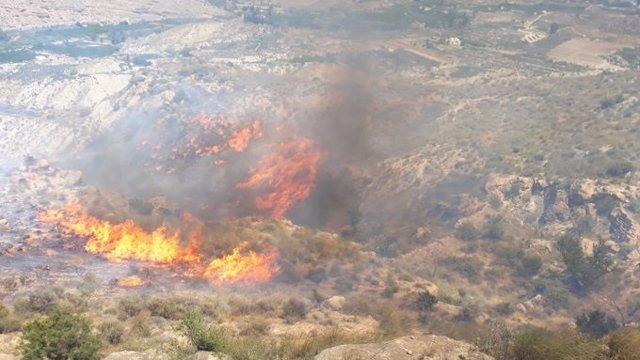 Llamas en el incendio forestal de Terque (Almería)