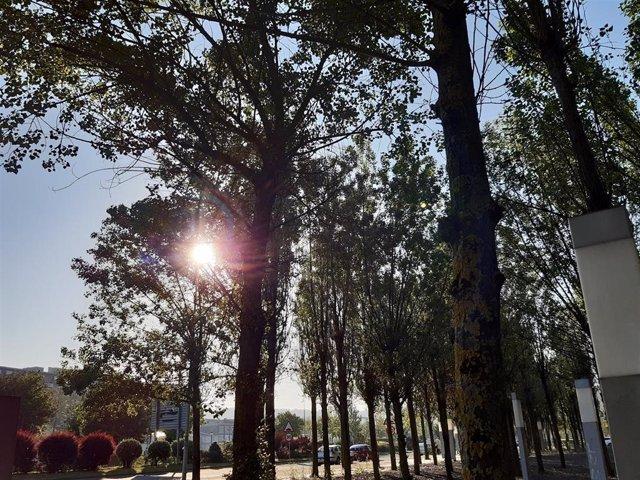Cielos despejados en Barakaldo (Bizkaia).