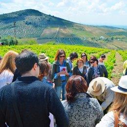Una de las actividades de la Ruta del Vino Montilla-Moriles