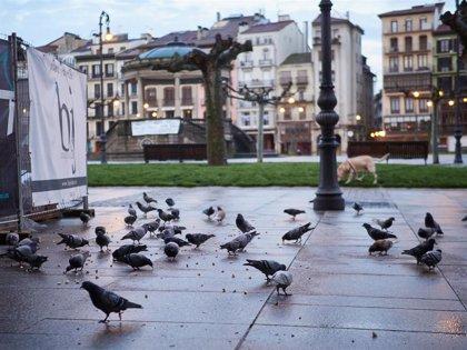 Más de 5.000 personas han llamado al Teléfono de la Esperanza en Navarra por problemas asociados al coronavirus